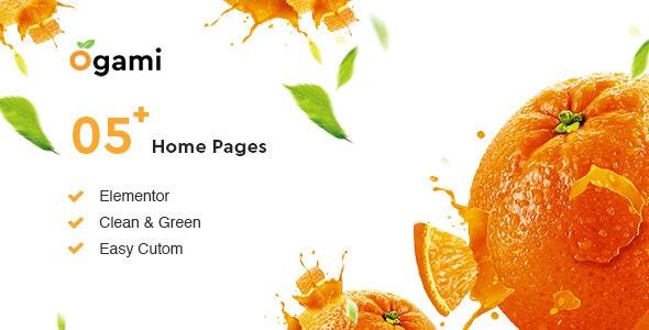 Ogami v1.30 – WordPress Organic Store 主题插图