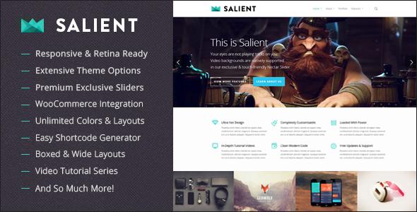 WordPress主题 Salient 高级工作室自适应作品展示汉化版[更新至v7.0.9]